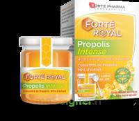 Forte Pharma Propolis Intense Gelée Pot/40g à Espaly-Saint-Marcel