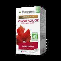 Arkogélules Vigne Rouge Bio Gélules Fl/45 à Espaly-Saint-Marcel