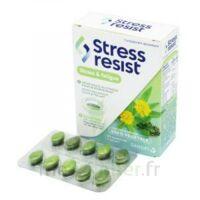 Stress Resist Comprimés Stress & fatigue B/30 à Espaly-Saint-Marcel
