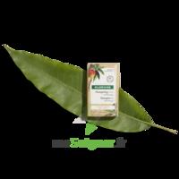 Klorane Capillaire Shampooing Solide Nutrition Mangue B/80g à Espaly-Saint-Marcel