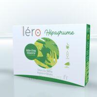 Léro Hepagrume Solution Buvable Complément Alimentaire 20 Ampoules/10ml à Espaly-Saint-Marcel