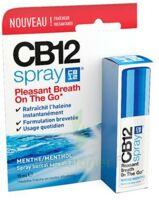 CB 12 Spray haleine fraîche 15ml à Espaly-Saint-Marcel