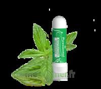 Puressentiel Respiratoire Inhaleur Respiratoire aux 19 Huiles Essentielles - 1 ml à Espaly-Saint-Marcel