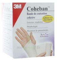 Coheban, Blanc 3 M X 7 Cm à Espaly-Saint-Marcel