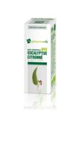 Huile essentielle Bio Eucalyptus Citronné à Espaly-Saint-Marcel