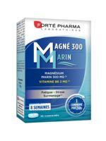 Magné 300 Marin (2 mois) à Espaly-Saint-Marcel