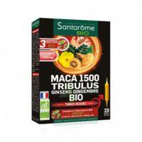 Santarome Bio Maca 1500 Tribulus Ginseng Gingembre Solution buvable 20 Ampoules/10ml à Espaly-Saint-Marcel