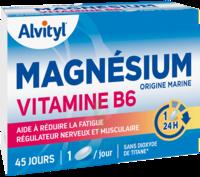 Govital Magnésium Vitamine B6 Comprimés B/45 à Espaly-Saint-Marcel