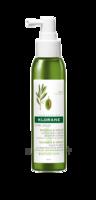 Klorane Capillaires Olivier Spray Sans Rinçage Olivier 125ml à Espaly-Saint-Marcel
