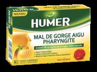 Humer Pharyngite Past Mal De Gorge Baies Sauvages à Espaly-Saint-Marcel